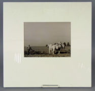 Francis Hans Johnston ARCA OSA CSPWC (Canadian 1888 – 1949) Two White Horses and a Ploughman